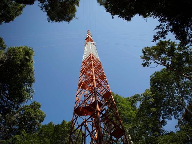 Torre vista do meio da floresta amazônica, em São Sebastião do Uarumã (Foto: Bruno Kelly/Reuters)