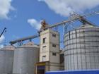 Exportação de grãos aos países árabes alcança recorde no 1º bimestre