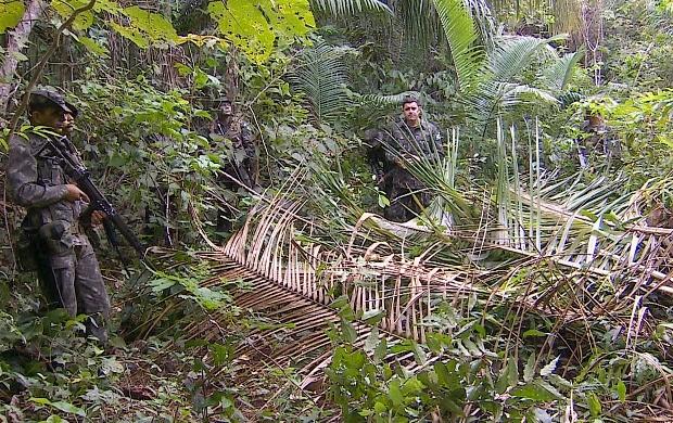 Pelotão de Fronteira combate crimes ambientais na região de Costa Marques, RO (Foto: Bom Dia Amazônia)