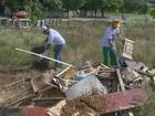 Com 71 casos de dengue, Matão, SP,  realiza mutirão contra o Aedes aegypti