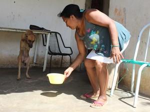Dona do anaimal conta que cadela é o xodó da família (Foto: Gustavo Almeida/G1)