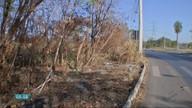 Limpeza de terrenos nos bairros