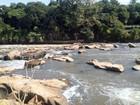 No Dia do Rio Piracicaba, manancial registra menor vazão do ano, diz Daee