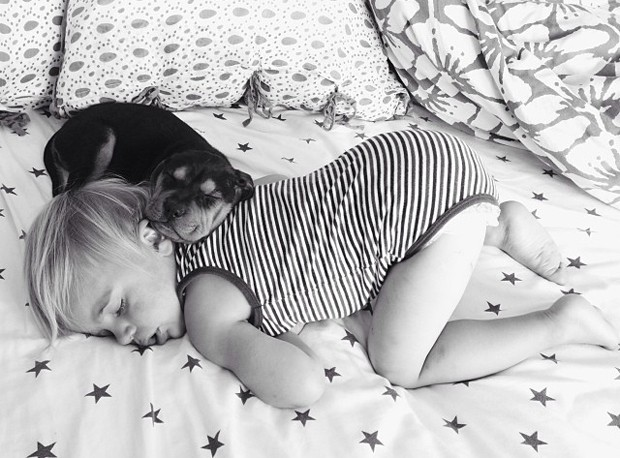 Americana afirma que, assim que um se deita para tirar uma soneca, o outro imediatamente acompanha no descanso (Foto: Reprodução/Facebook/Momma's Gone City)