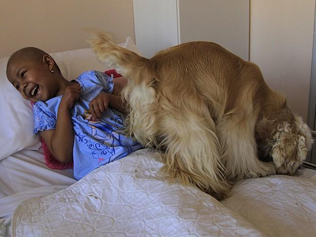 Câncer cães 3 (Foto: Dolores Ochoa/AP)
