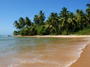 Ponta do Muta na Península de Maraú (Foto: Divulgação/ Aleilton Oliveira/peninsulademarau.com  )