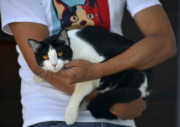 Dono segura 'Morris' enquanto usa camiseta do 'candigato' (Foto: Oscar Martinez/Reuters)