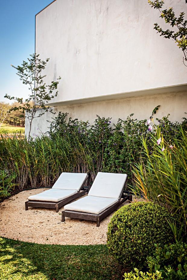 Área de descanso | O espaço com espreguiçadeiras foi delimitado por pedriscos e orquídeas-bambu plantadas lado a lado, em frente à cerca-viva de tumbérgia. No canto direito, buxinho (Foto: Gui Morelli/Divulgação)