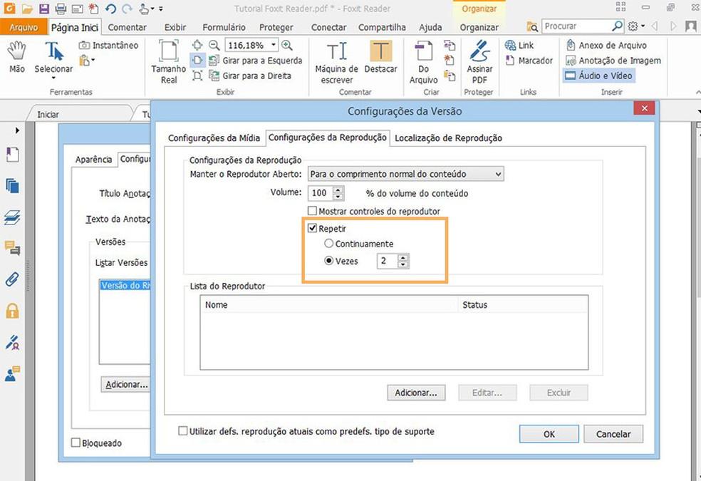 Reproduza o arquivo continuamente ou inclua um numero limitado de repetições  (Foto: Reprodução/Davi de Lima)