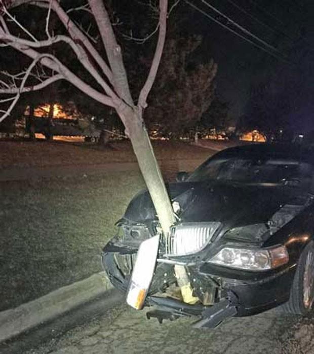 Motorista foi flagrada dirigindo com árvore entalada na parte frontal do carro (Foto: Reprodução/Facebook/Roselle Police Department)