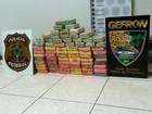 Em um dia, 122 kg de droga são apreendidos perto da fronteira de MT