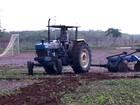 Agricultores do Nordeste torcem por uma boa safra na região