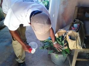 Agentes verificam se há larvas do mosquito transmissor da dengue na casa dos moradores (Foto: Michelly Oda / G1)