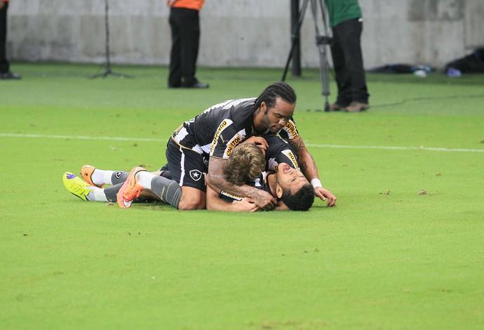 Rogério e Carlos Alberto, gol Botafogo (Foto: Danilo Mello / Ag. Estado)