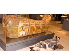 Nana Gouvêa reproduz estátuas em visita a museu de Nova York