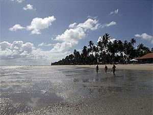 Praia dos Carneiros - Tamandaré - Pernambuco (Foto: Fabíola Blah/G1)