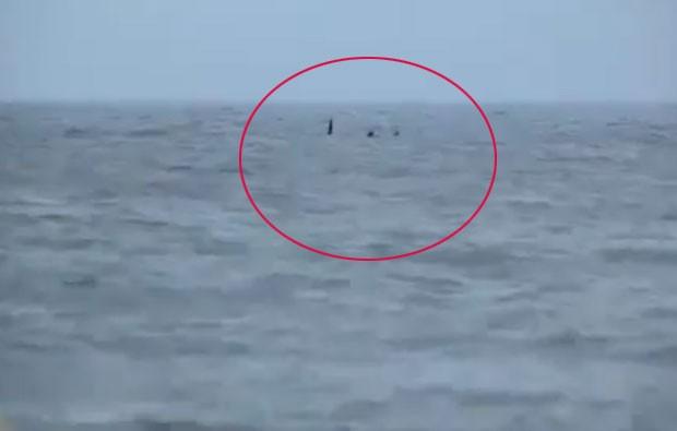 Vídeo foi feito por Rebecca Clarke na praia de Skegnes. (Foto: Reprodução)