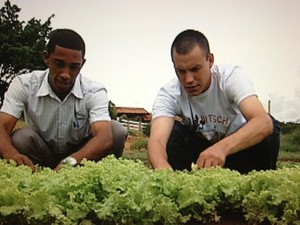 Uma das atividades na clínica é o cuidado com a horta (Foto: Reprodução / TV Tem)