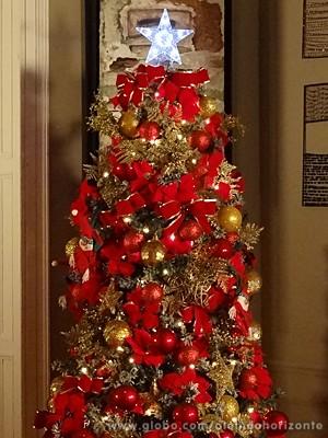 Árvore de Natal tem dois metros de altura (Foto: Além do Horizonte/TV Globo)