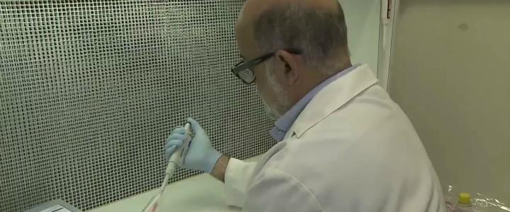 Resultado de imagem para Ceará tem três casos suspeitos de 'doença da urina preta', diz governo