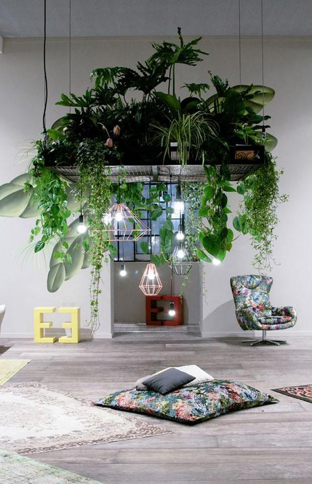 paisagismo-plantas-pendentes (Foto: Divulgação)