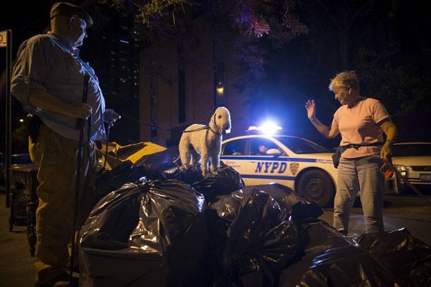 Grupo de americanos tem usado seus cães para caçar ratos enormes na cidade de Nova York (Foto: Mike Segar/Reuters)