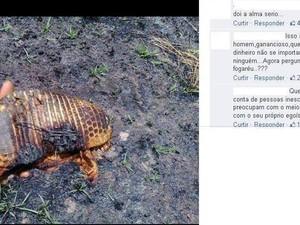 Integrante do Prevfogo mostra tatu encontrado morto pelo fogo (Fot Adailton Paulino/Arquivo pessoal)