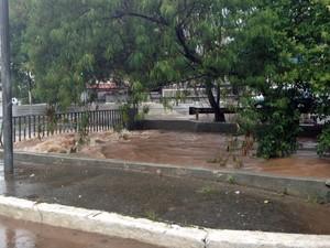 Córrego no limite antes de transbordar na Avenida Ricardo Jafet (Foto: Thiago Reis/G1)