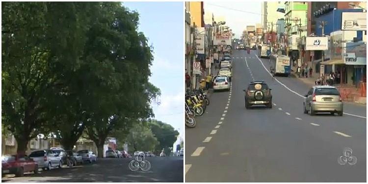Dia da Árvore é lembrado em Porto Velho-RO (Foto: Amazônia TV)