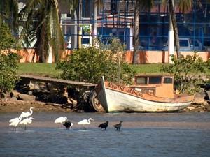 Pesca é a principal fonte de renda de 150 famílias (Foto: Reprodução/ TV Gazeta)