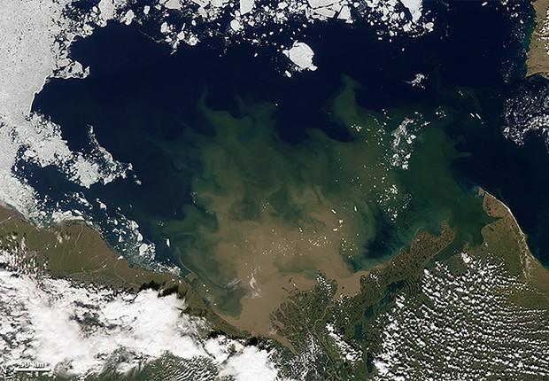No dia 5 de julho de 2012, a geleira já está transformada em bloquinhos flutuantes no Ártico (Foto: Nasa)