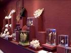 Maior museu oceanográfico da América Latina abre nesta segunda