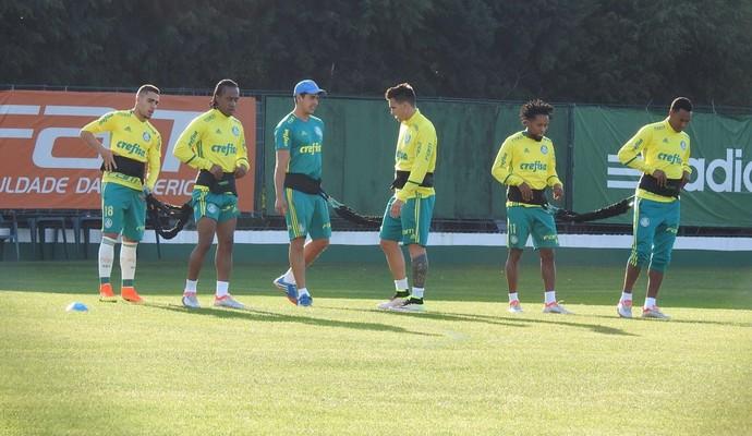 Gabriel, Arouca, Mouche, Zé Roberto e Fabricio Palmeiras (Foto: Rodrigo Faber)