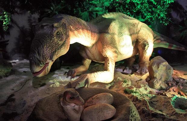 Exposição leva o público a uma viagem dos anos 2000 direto para a era Jurássica. (Foto: Fernando Battistetti/ Divulgação)