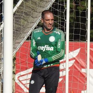 Fernando Prass Palmeiras Bola Libertadores (Foto: Tossiro Neto)