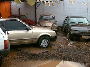 Revendedora de carros teve prejuízo total com enchente em São Carlos (Foto: Ely Venâncio/EPTV)