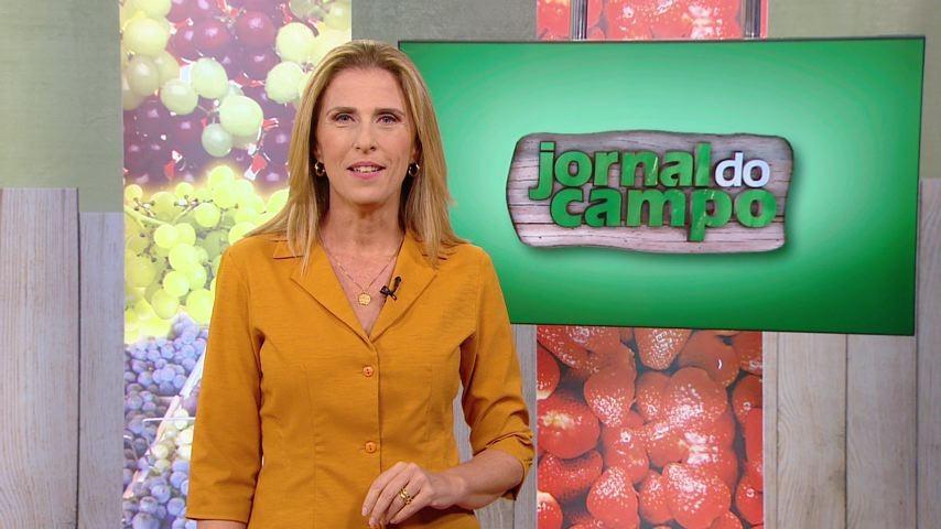 Jornal do Campo (04/05/14) (Foto: Claudia Gregório comanda o Jornal do Campo (Foto: TV Gazeta))