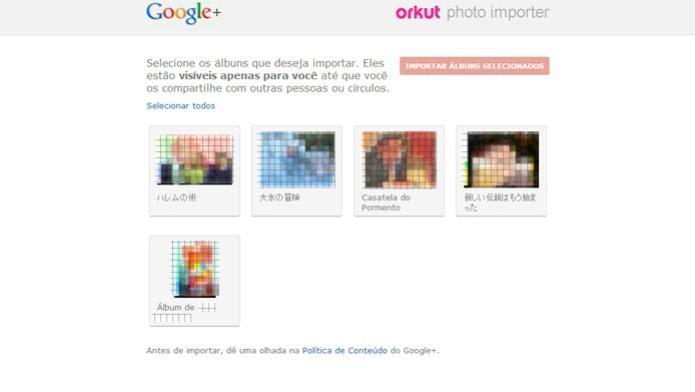 Ferramenta permite selecionar álbuns que serão exportados do Orkut (Foto: Reprodução/João Kurtz)