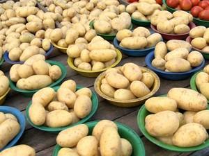 Batata foi o produto que sofreu a maior queda de preço no mês de agosto, no ES (Foto: Reprodução/ TV Gazeta)