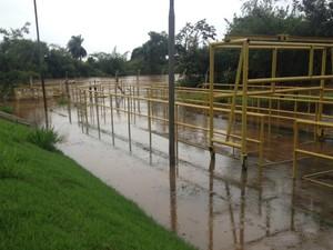 Local de captação de água na nascente do rio Dourados, em Dourados (MS) (Foto: Camilla Jovê/ TV Morena)
