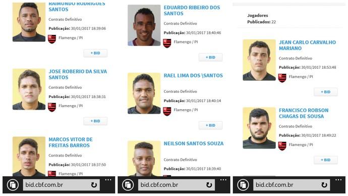 Flamengo-PI, jogadores regularizados no BID  (Foto: Reprodução CBF)