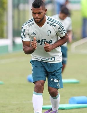 Borja Palmeiras (Foto: César Greco / Ag. Palmeiras / Divulgação)