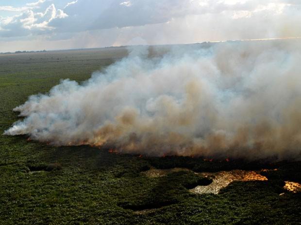 Incêndio reserva do Taim (Foto: CMBio/Divulgação)