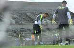 Michel Alves ganha apoio de companheiros e do técnico Itamar Schülle no Botafogo