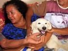 Cão que seguiu idosa sumida por três dias vira 'herói' da família (TV Verdes Mares/Reprodução)