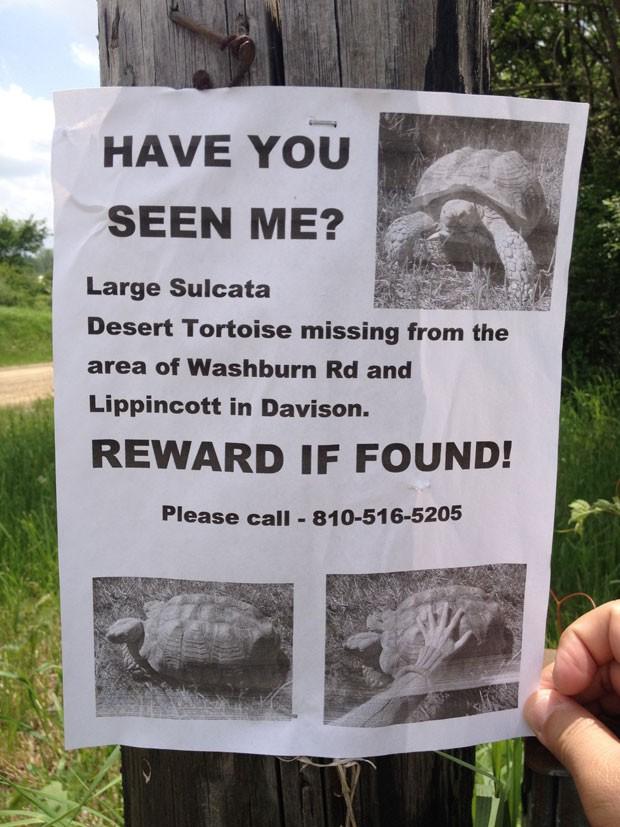 Chris Breuhan ofereceu recompensa para encontrar a tartaruga (Foto: Roberto Acosta/The Flint Journal/AP)