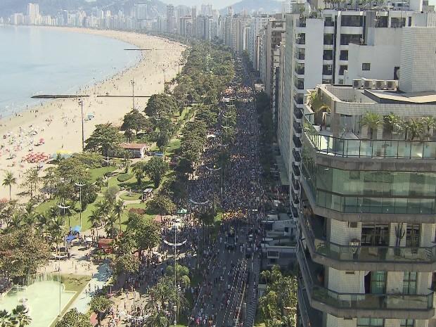 Mais de 20 mil pessoas participaram da 'Cãominhada' em Santos (Foto: Reprodução / TV Tribuna)