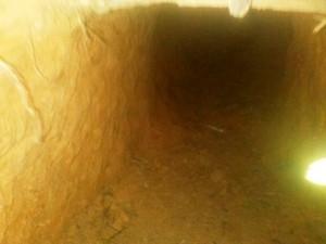 Segundo Deap, túnel é estreito  (Foto: Divulgação)