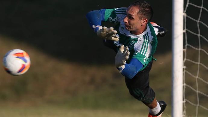 fernando prass palmeiras treino (Foto: Cesar Greco/Ag. Palmeiras/Divulgação)