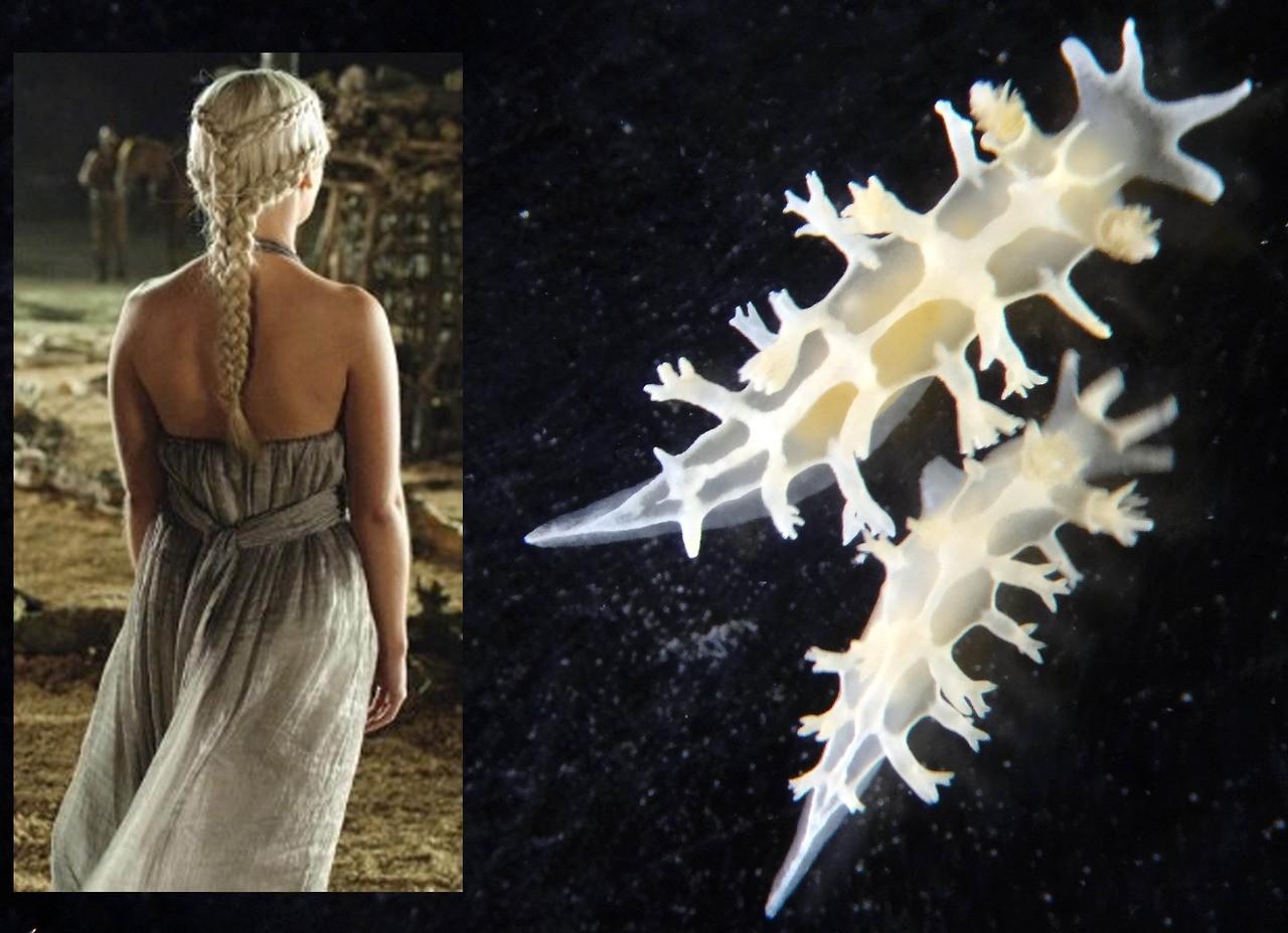 Tamanho reduzido e semelhança com as tranças prateadas de Daenerys motivaram escolha (Foto: gaymerbr/Tumblr/Reprodução)